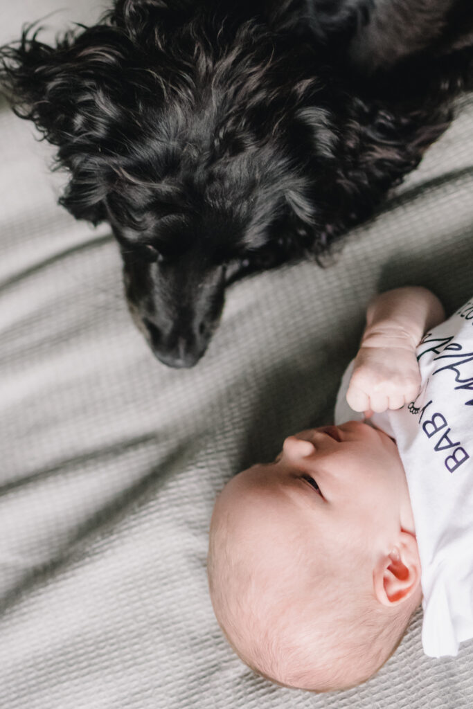 Sittingbourne newborn photoshoot. Dog looking at baby while they lay on the bed together.